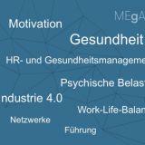 MEgA-Projekt Online-Umfrage