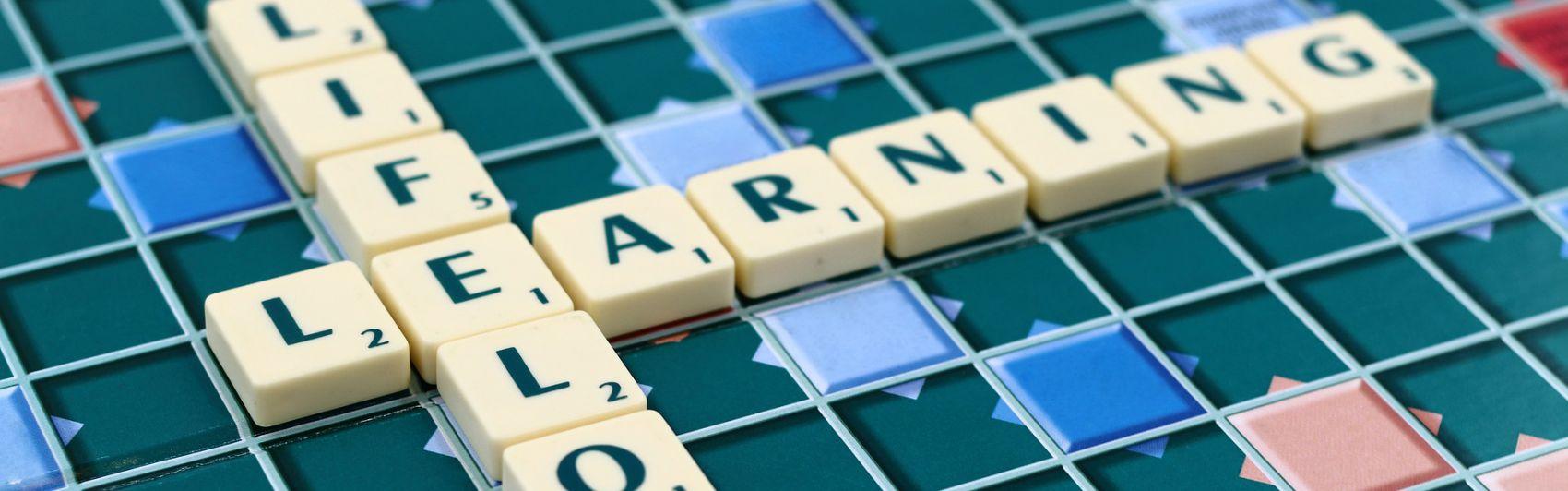 Lebenslanges Lernen; Weiterbildung; Personalentwicklung; HR Tech;